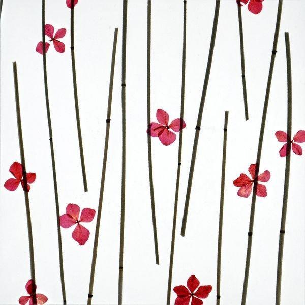 organic material resin panel Poppy