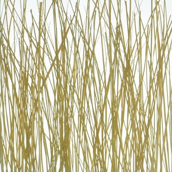 organic material resin panel Wood grass